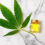 CBD Oil with THC: Defining the Two Different Compounds